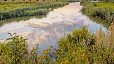 L'eau dans la plaine